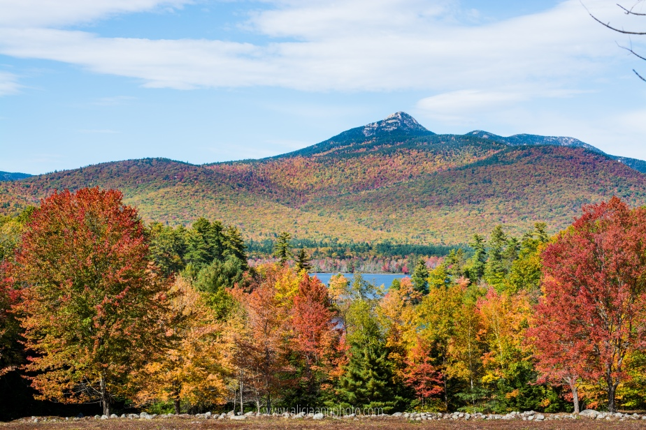 new-hampshire-foliage-2016-30
