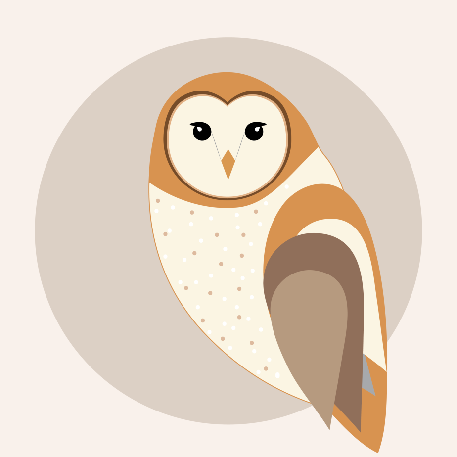 The Wise Owl | Wildlife Illustration